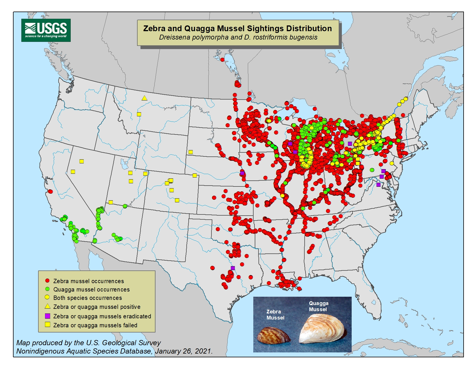 The Zebra Mussel Threat - Us waters map